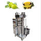 Factory price 100kg/h hydraulic soybean oil extraction machine sacha inchi oil press machinery olive oil machine