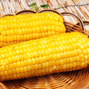 high-quality pass KOSHER chinese vegetable sweet corn frozen with high quality