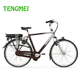 250w men retro city go cycle electric bikes for adults