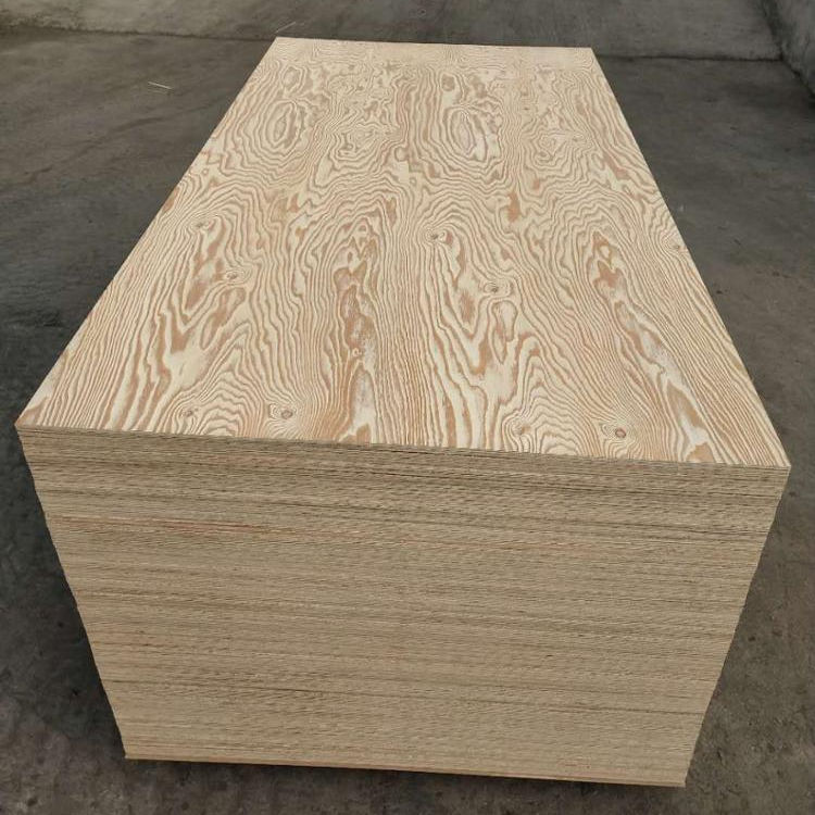 Larch Veneer Plywood with cheap price
