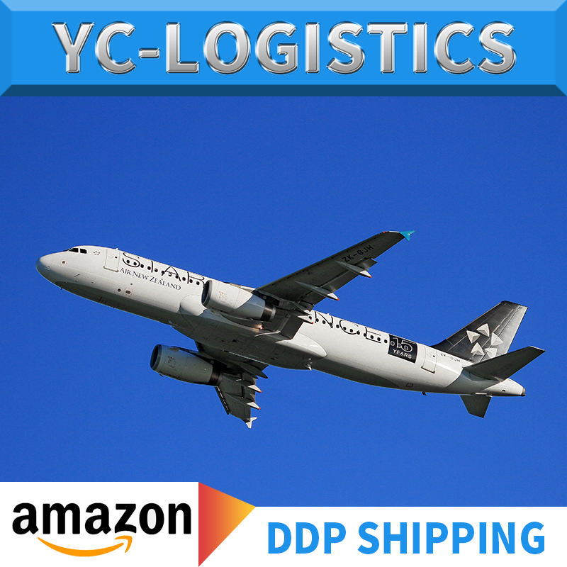 DDP/DDU door to door service shipping by air freight from china to India FBA Amazon