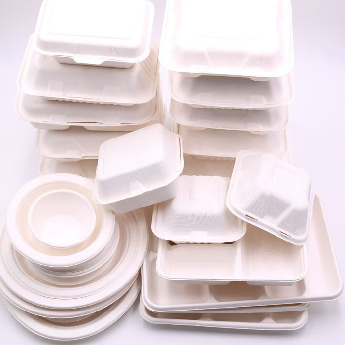 sugarcane bagasse material pulp molded packaging