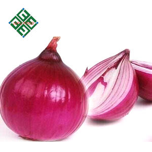 lowest price bulb fresh red onion and yellow onion