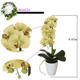 Konda artificial plants green orchid artificial orchid flower in pot cymbidium fake white orchid potted plant