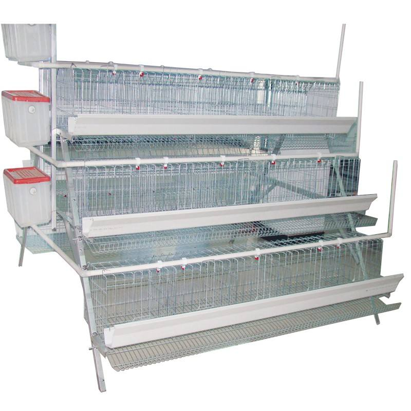 ce approved hot selling poultry layer chicken egg cages animal cages with 3L 4L 5L size