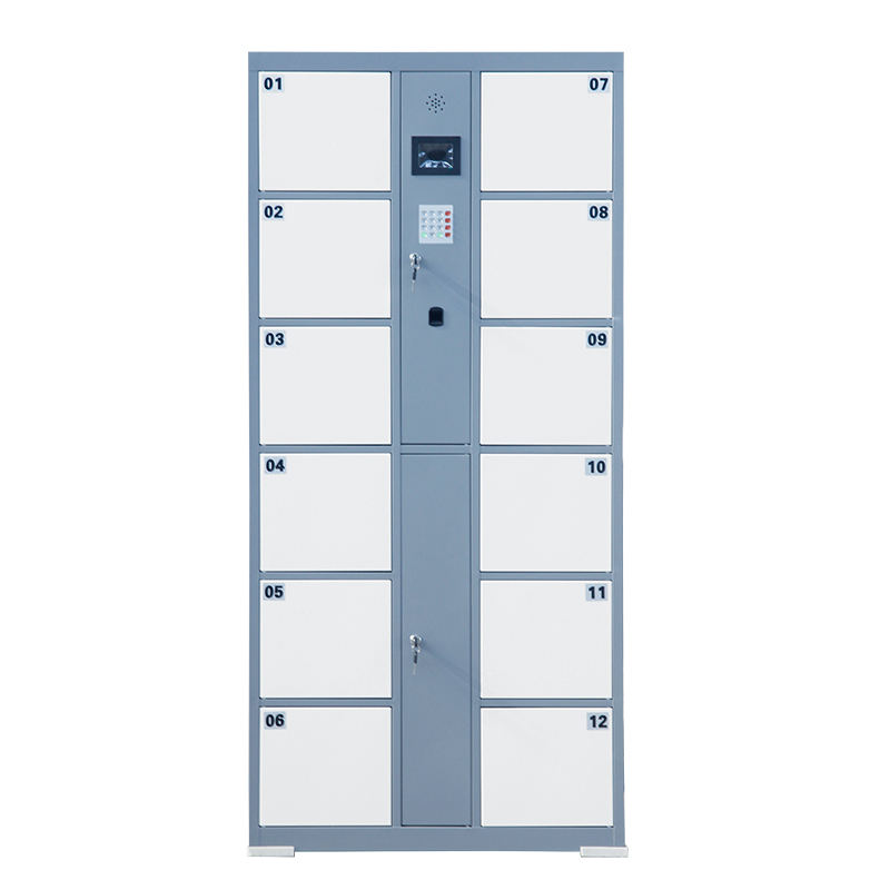 metal automatic electronic smart parcel fingerprint locker