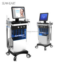 9 IN 1 Water Oxygen Skin Diamond Dermabrasion Machine/Hydro Dermabrasion Machine