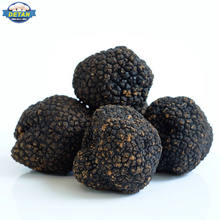 Detan Fresh Wild Black China Truffles