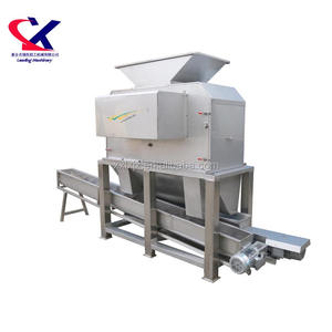 Industrial Factory Equipment Pineapple Juice Extractor Machine Fruit Peeler and Juicer machine