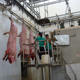 China Factory Price Swine Pig Abattoir Slaughtering Equipment for Swine Slaughterhouse