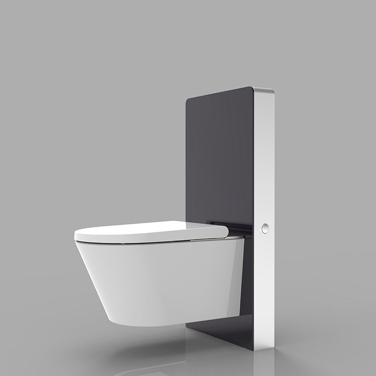 Concealed Cistern WC Concealed Cistern With Front Of Glass Integrated With Electronic Bidet Seat