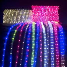 led Christmas rope lights of multi-colors