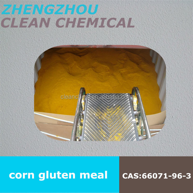 Corn Gluten Meal for sale in Ukraine made of best quality corn low price