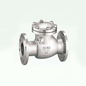 8 inch Ductile Iron Cast Iron Flanged Swing Check Valve