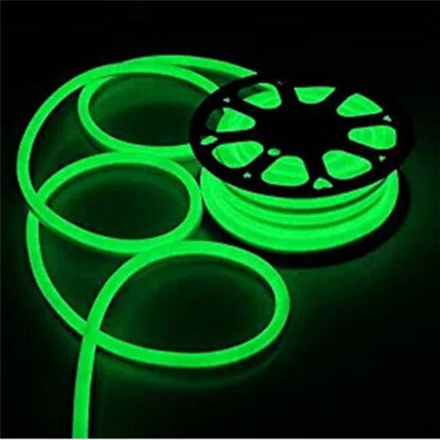 red blue yellow green warm white rgb outdoor led flex 110v 220v flexible neon strip light