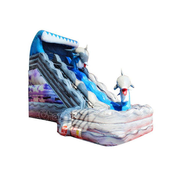 ocean world jumping castles inflatable water slide with pool sales