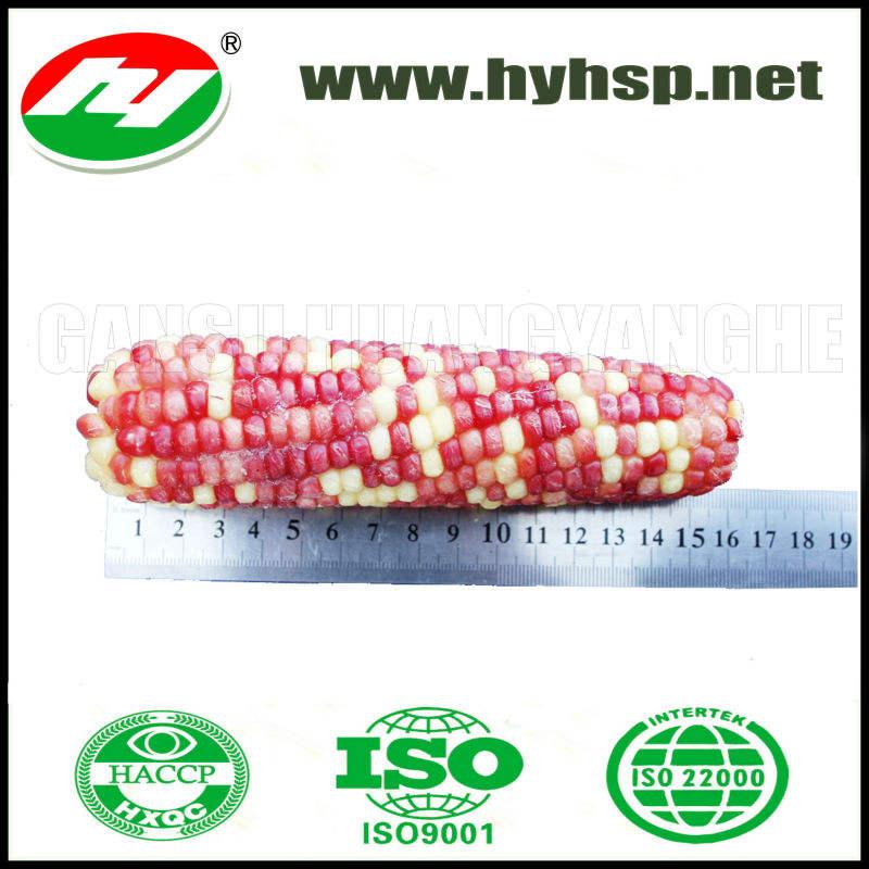 замороженной кукурузы цвет с хорошим вкусом и дешевой цене