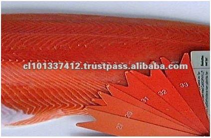 Chile High Quality and Best Price Pacific Salmon