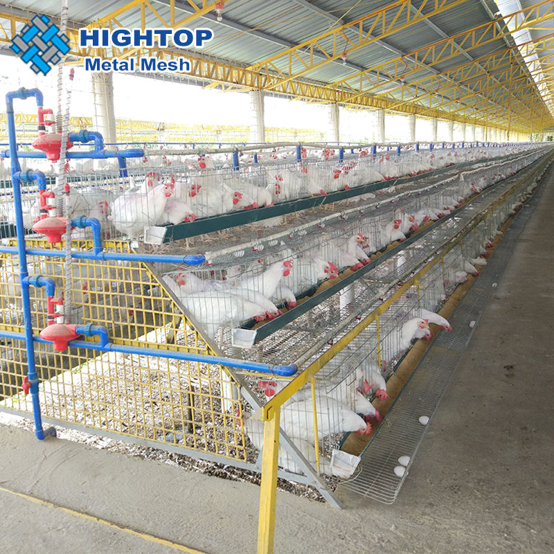 Best selling wholesale 5 tiers 5 nest commercial poultry chicken layer battery cage system