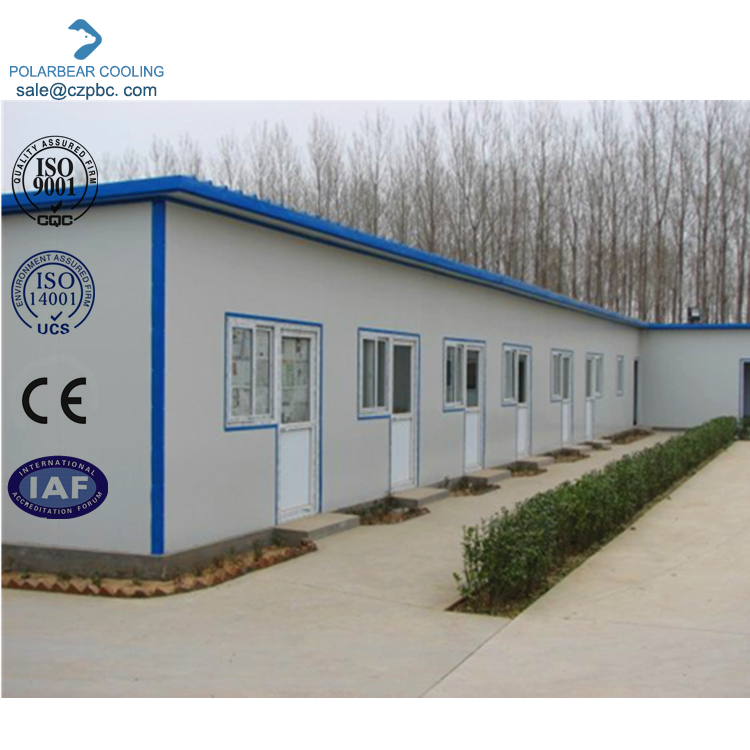 Durable polystyrene bricks sandwich panel homes