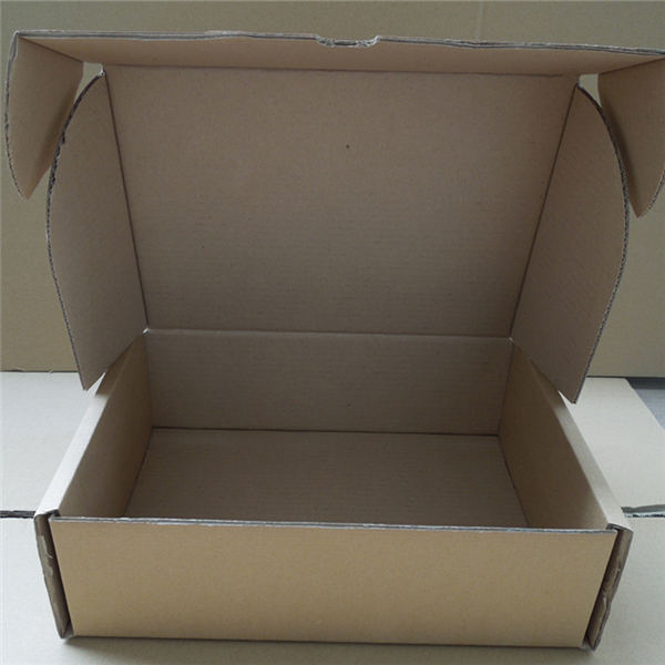 Corrugated Carton Packaging Boxes with Partition