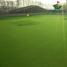 12mm Artificial Grass Golf Putting Green Turf Synthetic Lawn