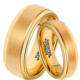 Hot Sale in Brazil18K Gold Couples Valentines Gifts Tungsten Wedding Band Ring For Lovers Women Alliances Of Marriage TU025RC