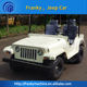 Custom mini jeep willys 150cc