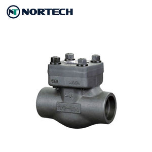 china forged steel API602 lift swing check valve