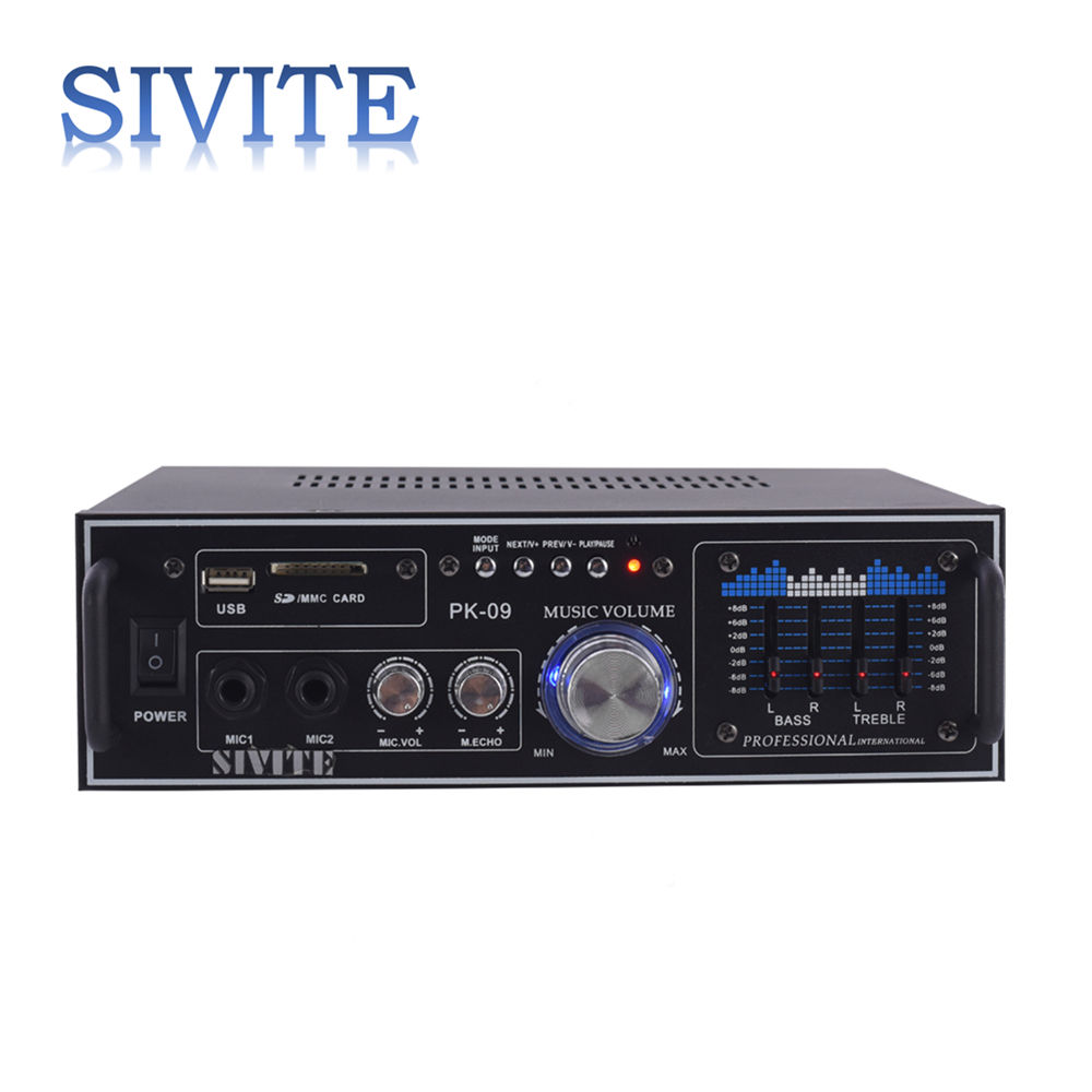 Sivite NPK09 dengan 5-Band Graphic EQ Mini Usb Drive Amplifier