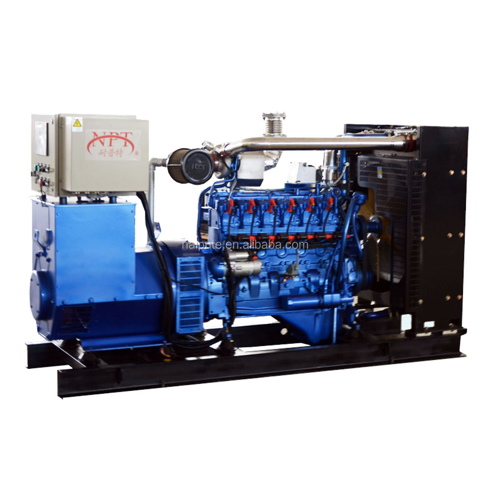World famous brand natural gas powered portable generators with Chinese price