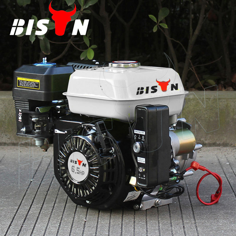 들소 (CHINA) BS168f-1 Small 반 Speed 감소 6.5hp Gasoline Engine 와 Clutch
