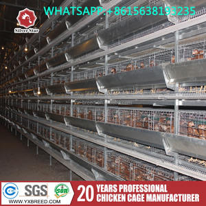 Silver Star chicken layer cage and chicken breeding cage for hot selling
