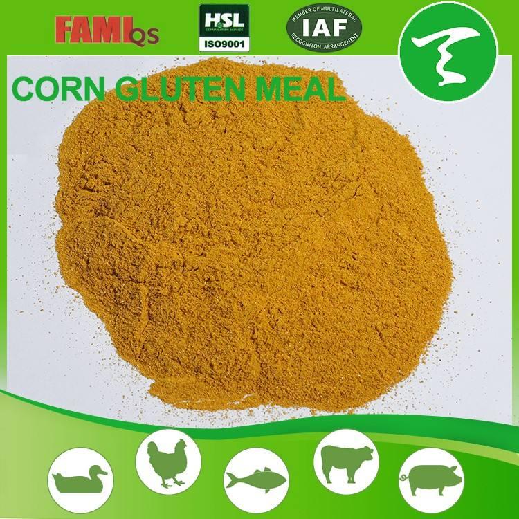 Toptan Çin ticaret mısır gluten unu/satılık ucuz fiyat sığır besleme