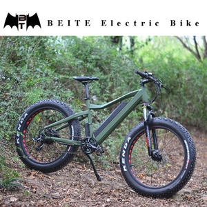 BEITE/TDE-09Z 1500w electric bicycle, cargo fat ebike