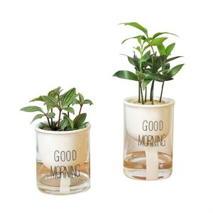 self watering plant pot automatic water absorbing flower pot