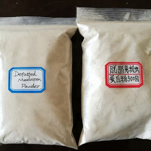 fish meal made from high protein Tenebrio insect protein insect powder insect flour