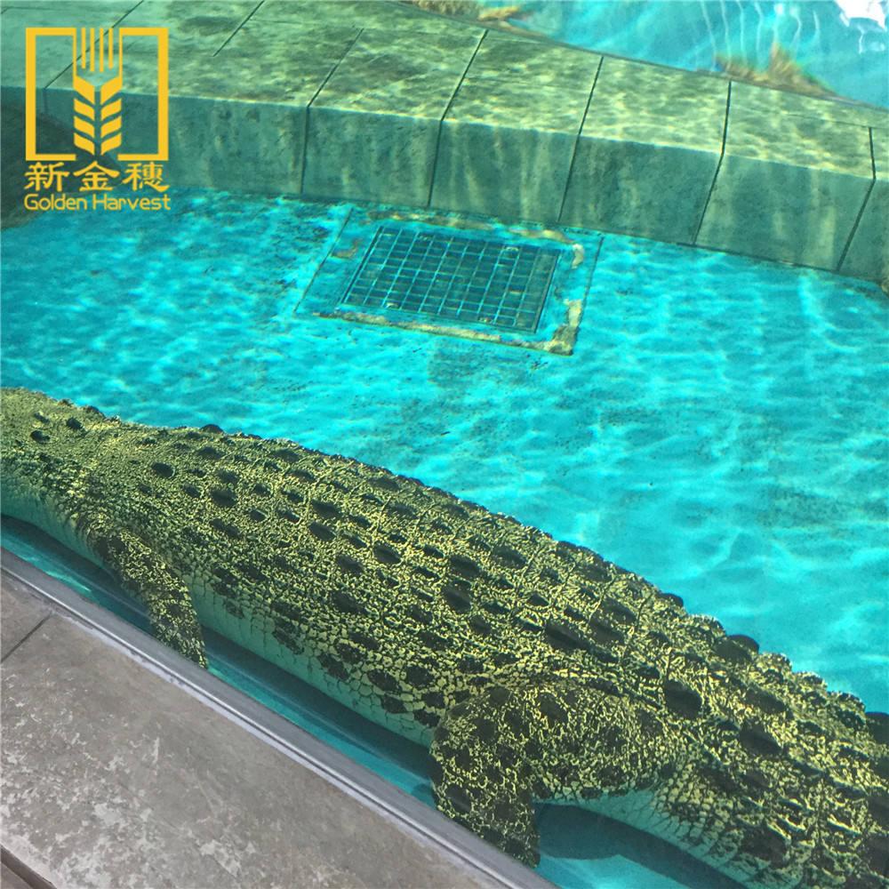Alta qualidade a baixo custo de plástico acrílico tanques de peixes de aquário de acrílico atacado