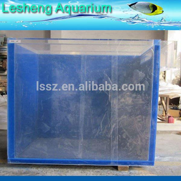 acrilico pesce con vetro