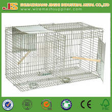 "30"" x 30"" x18""cm galvanized Larsen Bird Cage Trap for crow, jackdaw, jay magpie, raven, rook or even a pigeon."