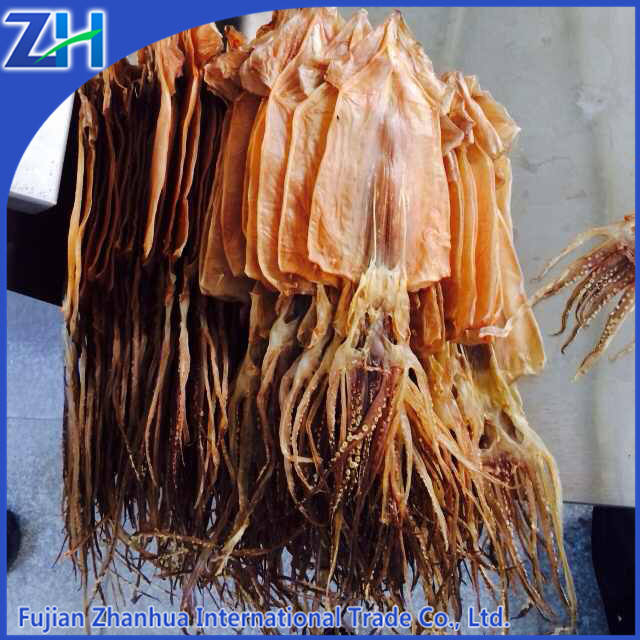 export dried squid illex skinless cleaned