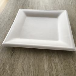 Disposable Biodegradable Bagasse 10 Inch  Square Plate