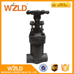 WZLD High Quality Extended Bolted Bonnet Stem 3/8 Inch API 602 Forged Gate Valve