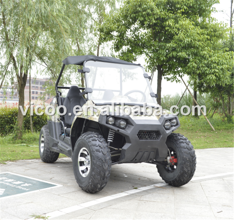 Cheap 2 seater Dune Buggy 300CC Side By Side UTV