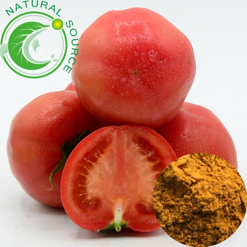 High Quality Dried Tomato Powder Pure Natural Lycopene Tomato Extract Powder For Sales
