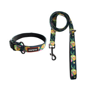 More colorful neoprene padded custom pattern polyester print dog collar and leash