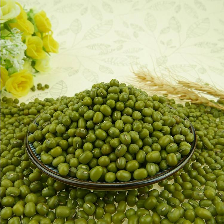 2019 Sprouted green mung bean moong dal size,3.6mm