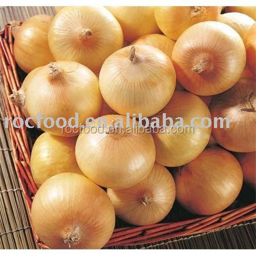 New crop Fresh Yellow Onion, red onion export from china