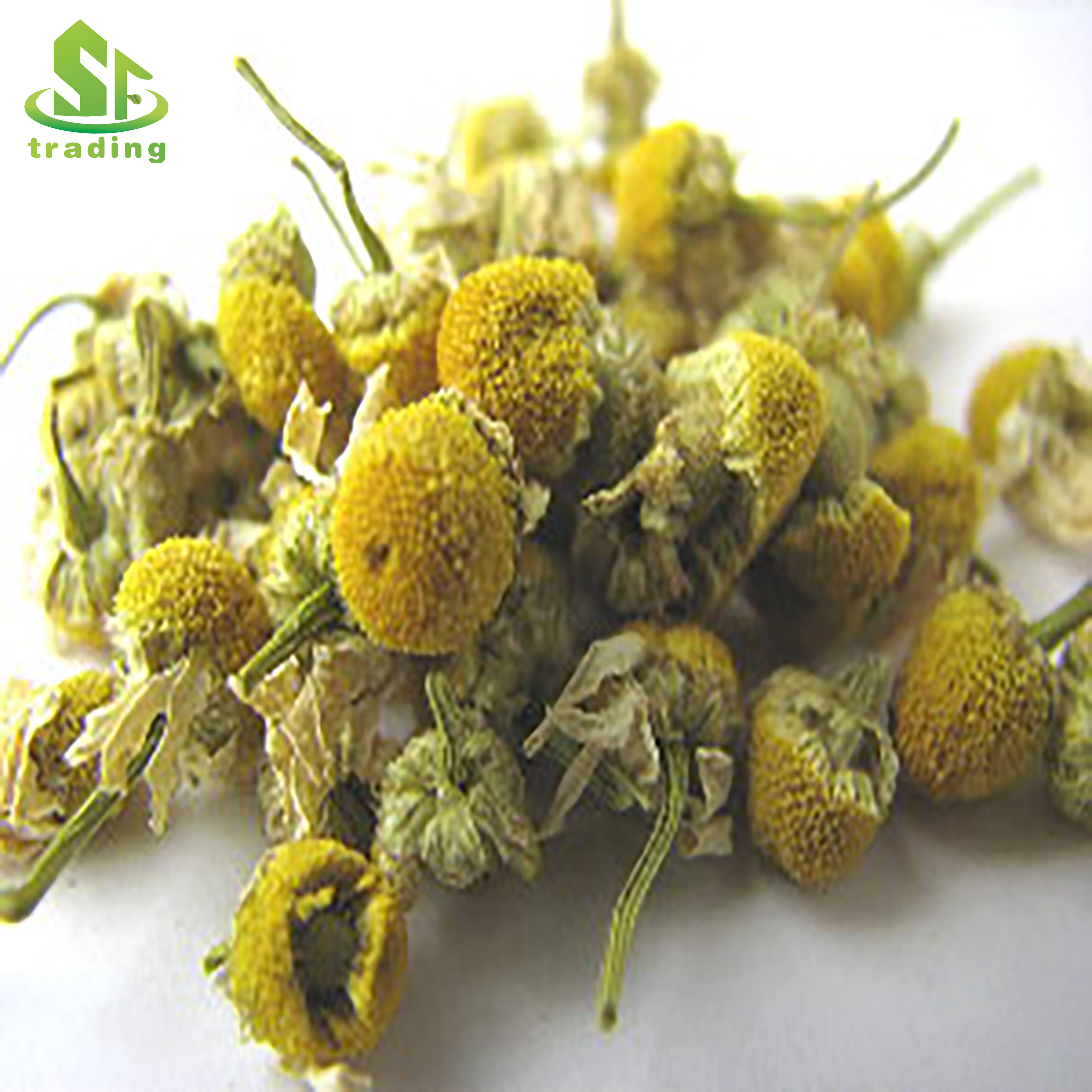 Chinesre chamomile flower tea organic chamomile tea