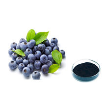 ISO Certificated 100% Natural Blueberry Extract Powder Anthocyanosides 25%/Anthocyanosides 36%